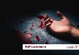 Ankara'da Cinayet Davalarına Bakan Avukatlar